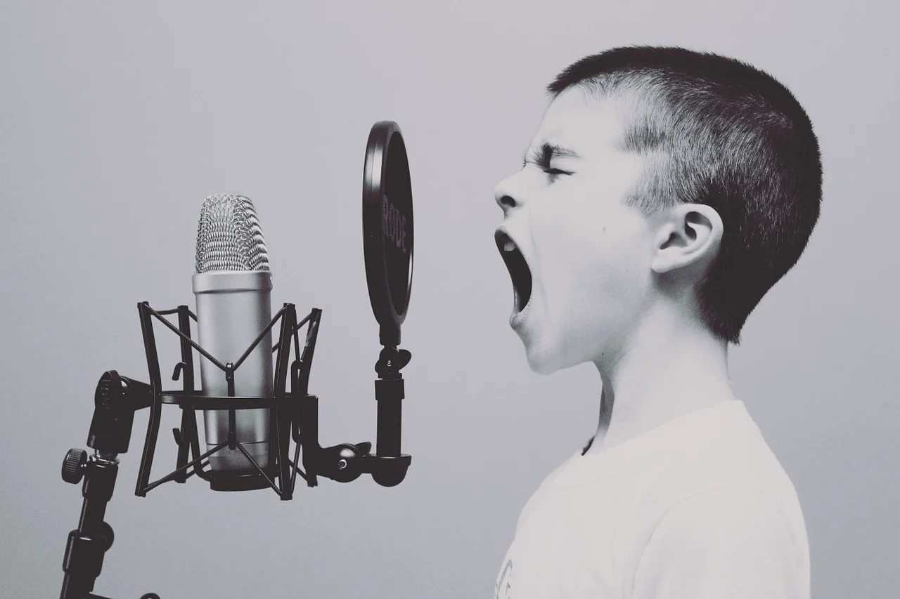 Why Do We Sing the Alphabet? Music and Language Processing in Autism Spectrum Disorder (ASD)