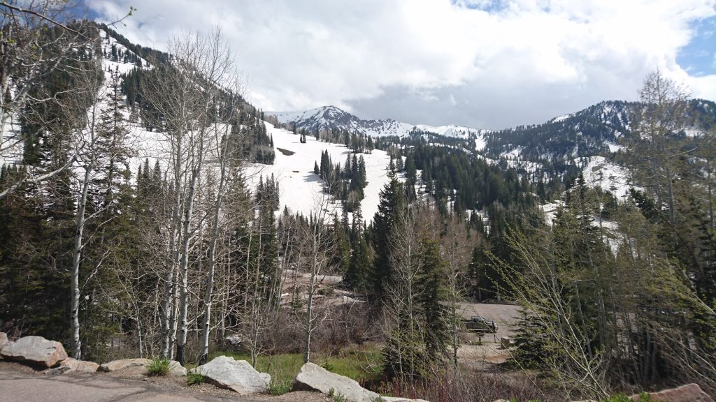 Snowbird mountains