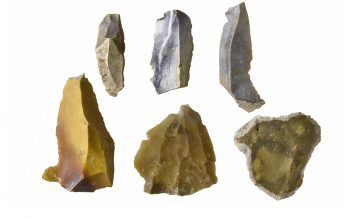 Prehistoric lithics (© Glastonbury Abbey; photograph: David Cousins)