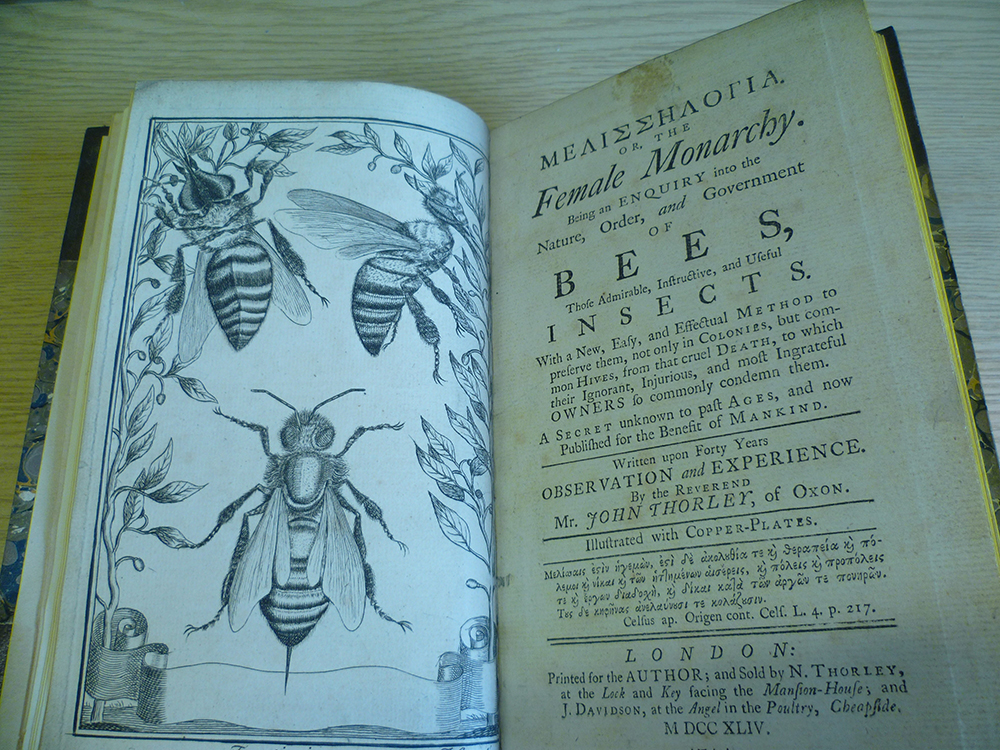 Cowan Bee collection image 2