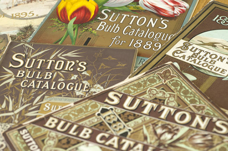Sutton's bulb catalogue