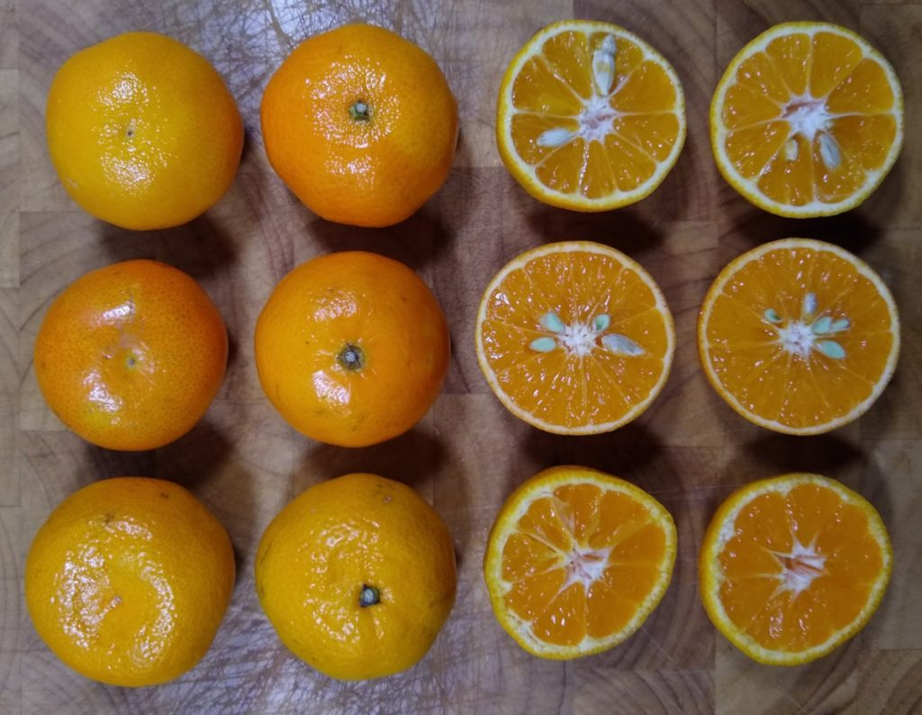 a grid of four wide by three high citrus fruit, the right hand side are half fruit showing sking thickness and contents