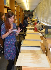 Herbarium Teaching