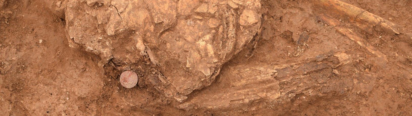 Bestansur – A Neolithic Community