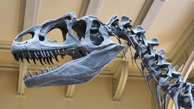 Reading research could shed light on how dinosaurs got so big.