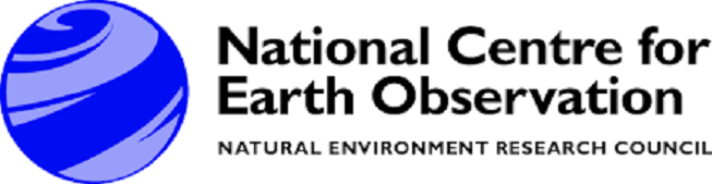 NCEO logo