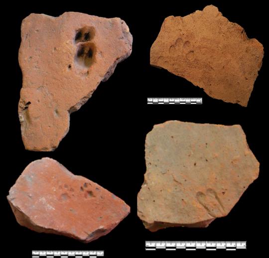 Footprints on Roman brick and tile